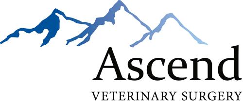 Ascend Veterinary Surgery